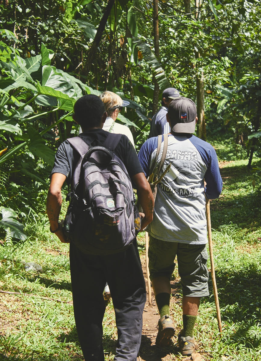 Bali Jungle Hike