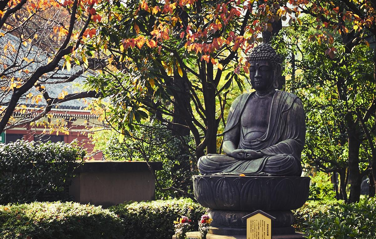 Asakusa adventures delightful vegans for Koi pond hiding places